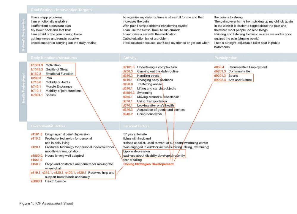 Figure 1 icf assessment sheet